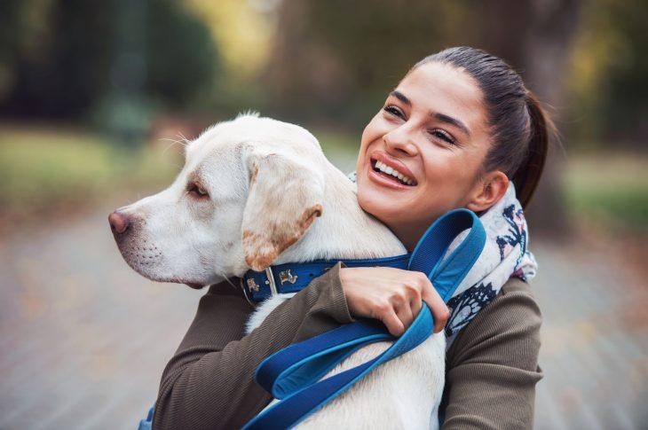 collier de dressage pour votre chien