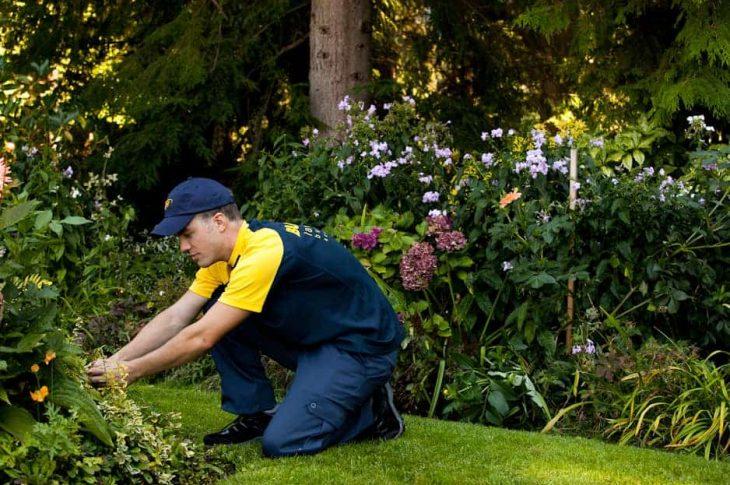 métiers en jardinage