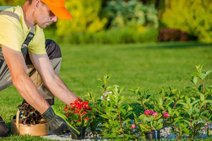 faire appel à un artisan jardinier